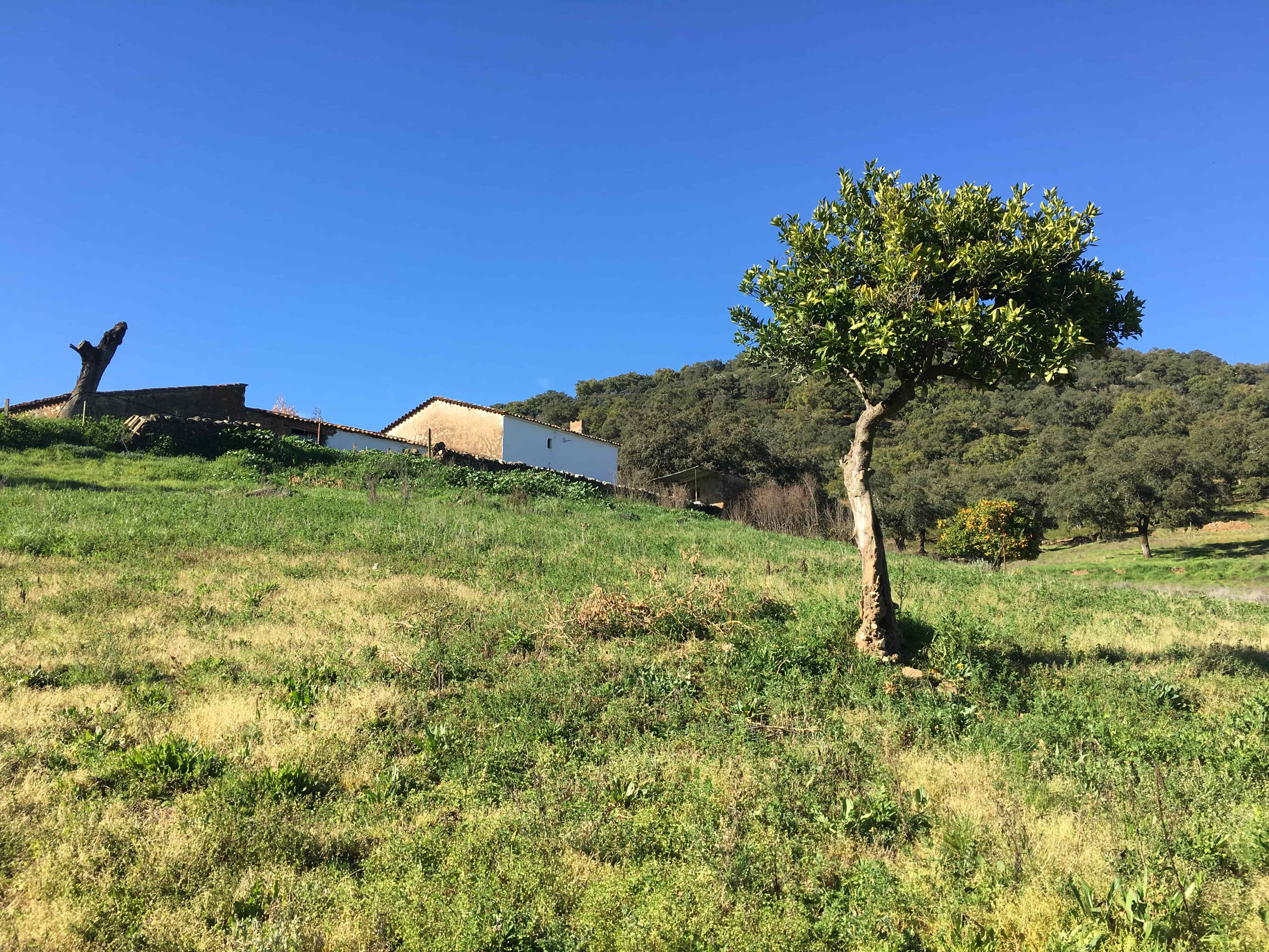 Our finca in Spain